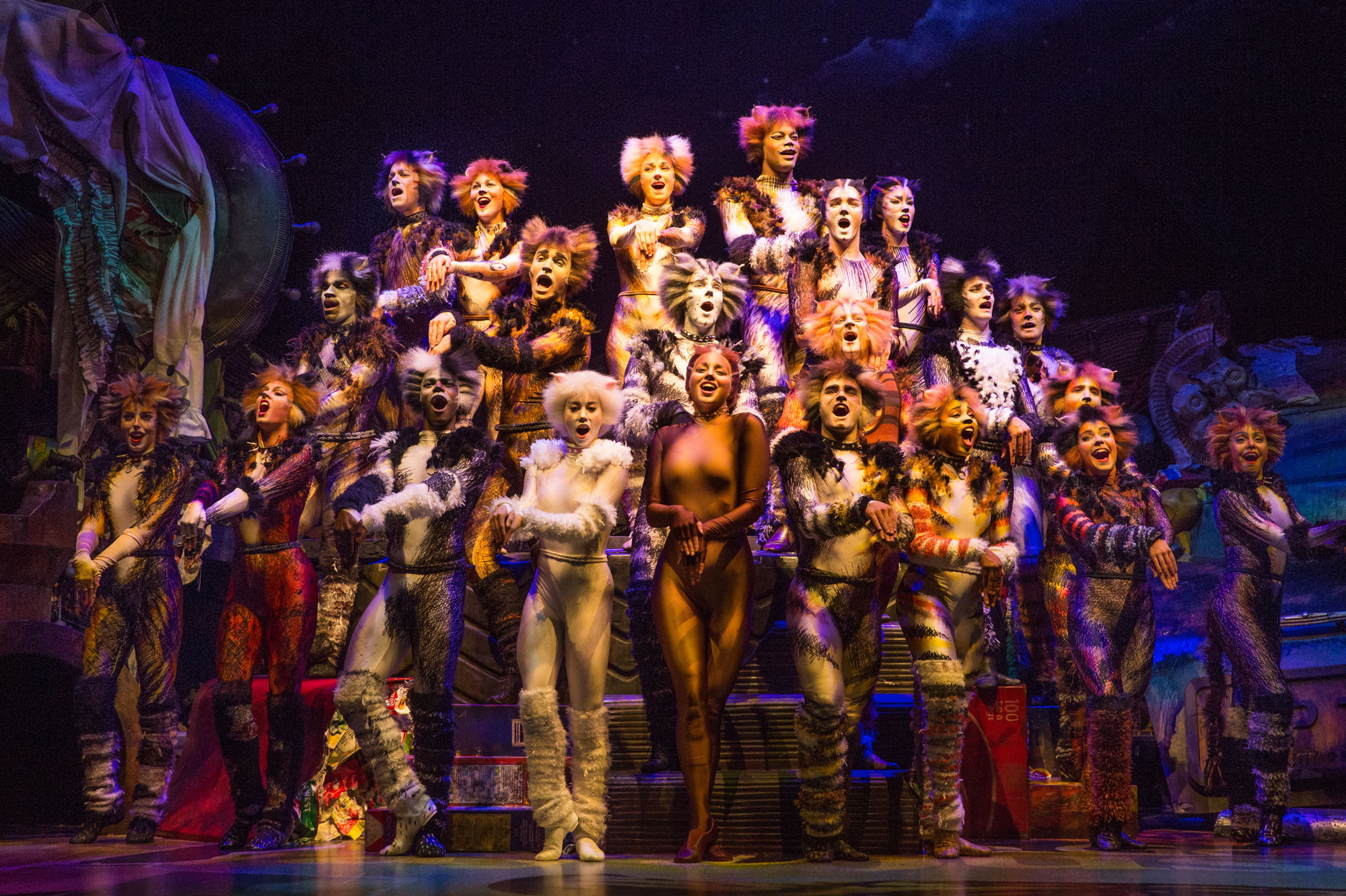 The-Company-of-CATS-on-Broadway---Photo-by-Matthew-Murphy